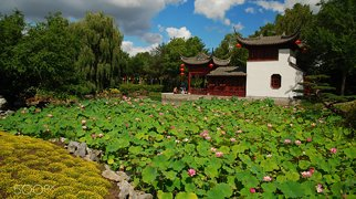 Montreal Botanical Garden>