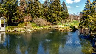 Morris Arboretum>