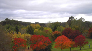 Mount Lofty Botanic Garden>