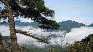 Mount Sanqing>
