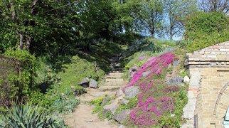 Национальный ботанический сад им. Н. Н. Гришко НАН Украины>
