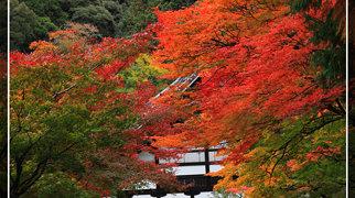 Nanzen-ji>