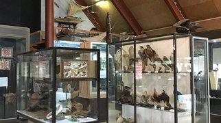 National Museum of Vanuatu>