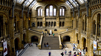 Natural History Museum>