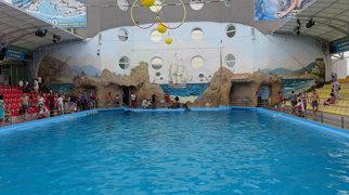 Odesos miesto delfinariumas>