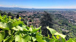 Orto Botanico di Bergamo >