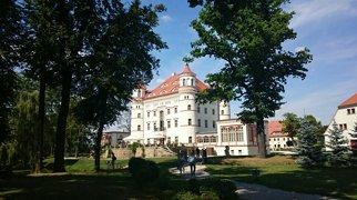 Pałac w Wojanowie-Bobrowie>