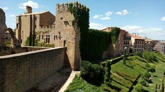 Castelo-palácio de Olite>