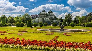 Palmenhaus Schönbrunn>