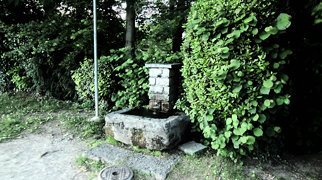 Parco San Michele>