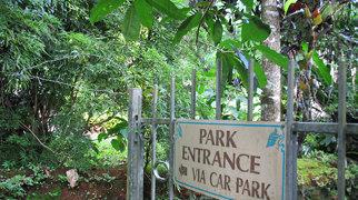 Paronella Park>