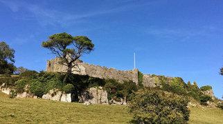 Penrice Castle>