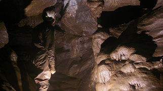 Pridhamsleigh Cavern>