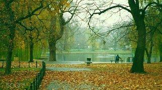 Public Garden (Boston)>