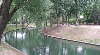 Purple Bamboo Park>