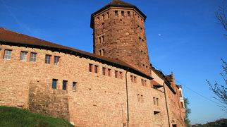 Rieneck Castle>