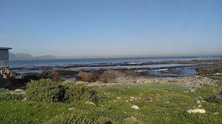 Insula Robben>