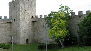 Rocca del Leone>