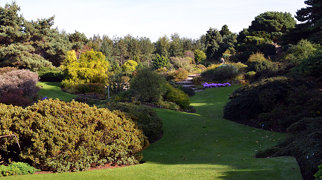 Royal Botanic Garden Edinburgh>