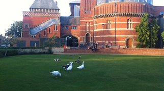 Royal Shakespeare Theatre>
