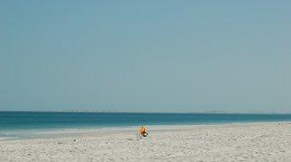 Saadiyat Island>