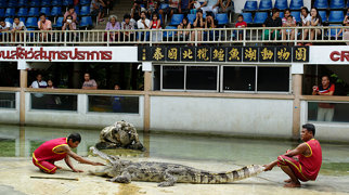 Samutprakarn Crocodile Farm and Zoo>