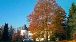 Sanem Castle>