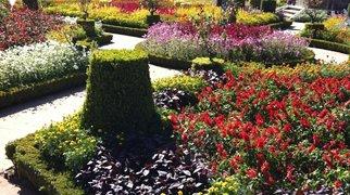 Santa Barbara Garden>