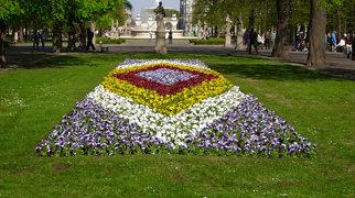Saxon Garden>