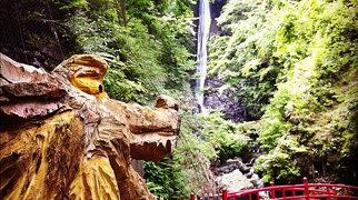 Shasui Falls>