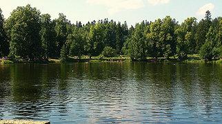 Шуваловский парк>