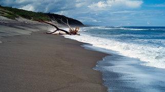 Sigatoka Sand Dunes>