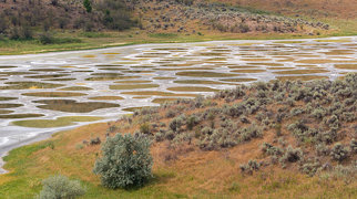 Spotted Lake>