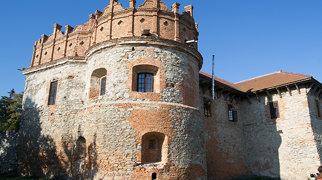 Starokostiantyniv Castle>