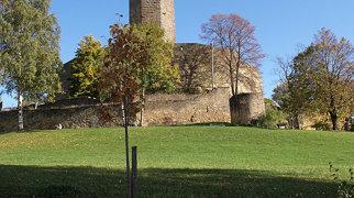 Steinsberg Castle>