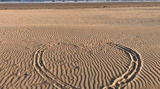 Swansea Beach>