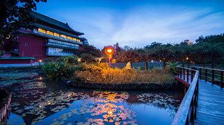 Taipei Botanical Garden>