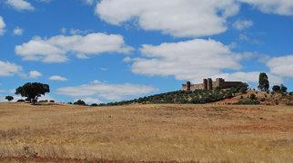 Terena Castle>