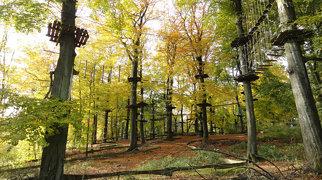 Teutoburgi erdő>