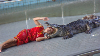 The Million Years Stone Park and Pattaya Crocodile Farm>