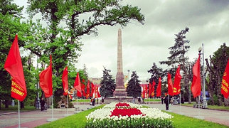 Тополь на площади Павших Борцов>