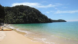 Torrent Bay>