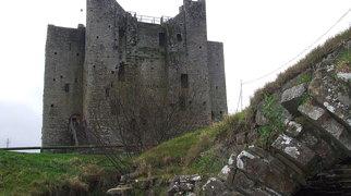Замок Трим>