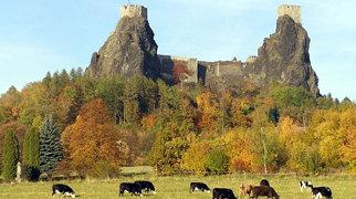 Burg Trosky>