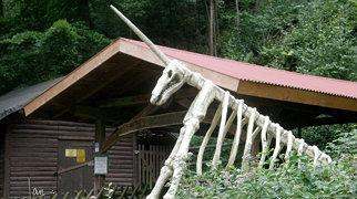 Einhornhöhle (Österreich)>