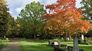 Vestre Cemetery>