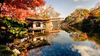 Wakayama Castle>