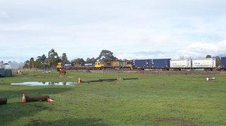 Westbury Maze>
