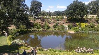 Wojsławice Arboretum>
