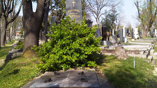 Wiener Zentralfriedhof>